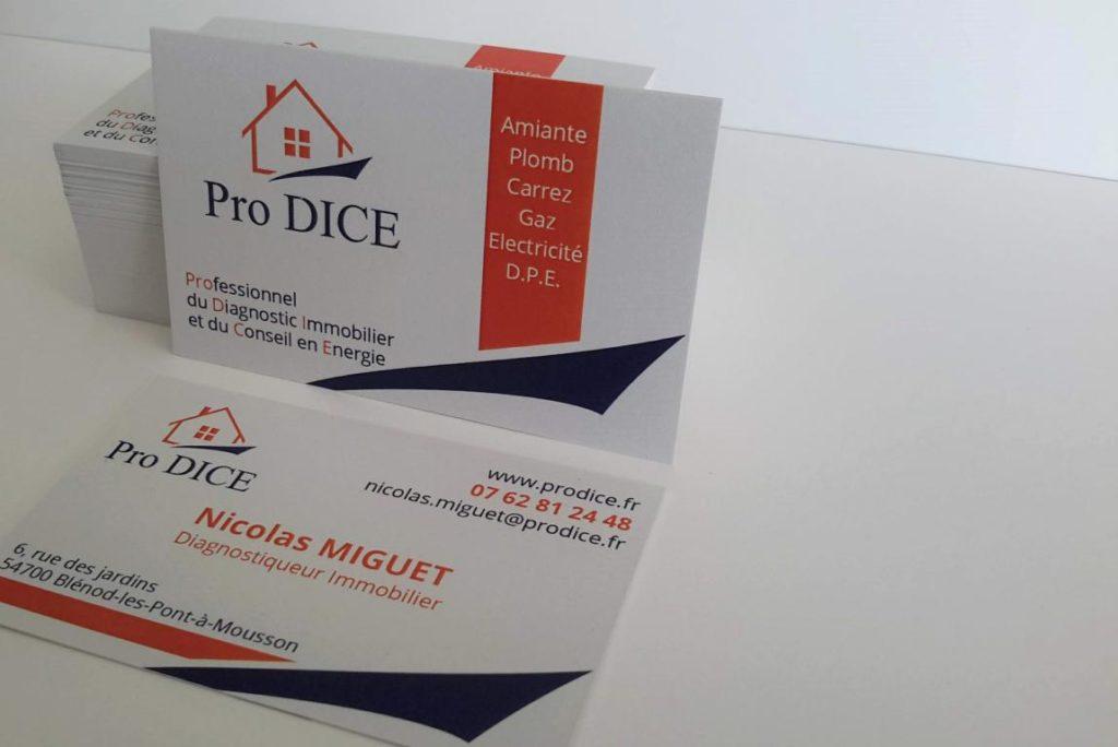 Réalisation de cartes de visite sur papier recyclé, diagnostic immobilier et conseil en énergie